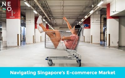 Navigating Singapore's E-commerce Market